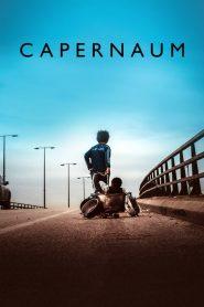 Capernaum (2018) ျမန္မာစာတမ္းထိုး