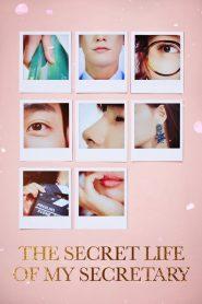The Secret Life of My Secretary